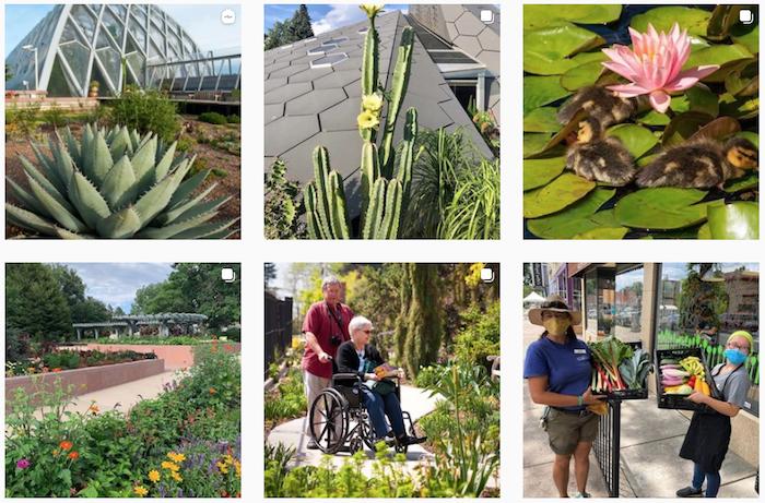 Denver Botanic Gardens Instagram