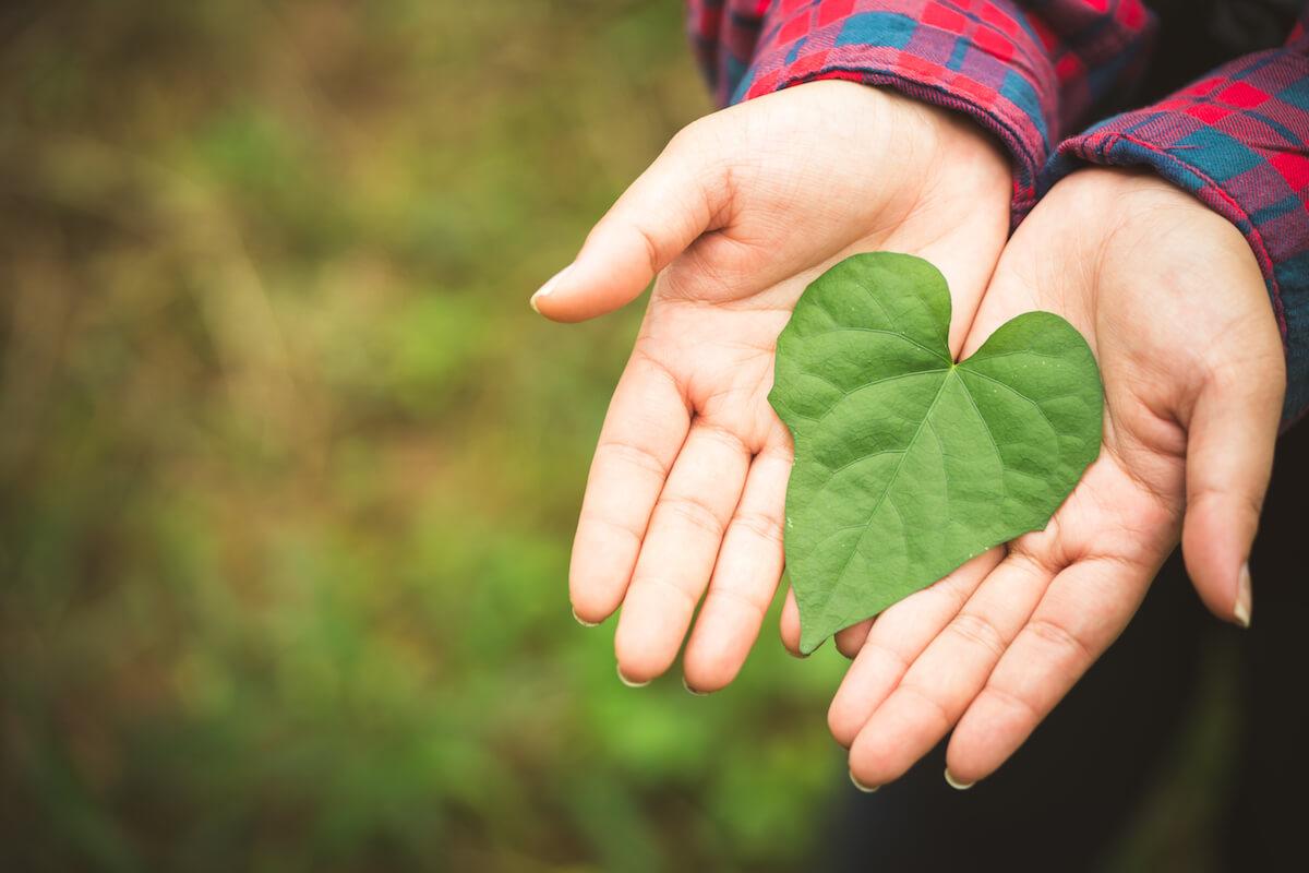 Markentum Celebrates Green Living with Plastic Free July