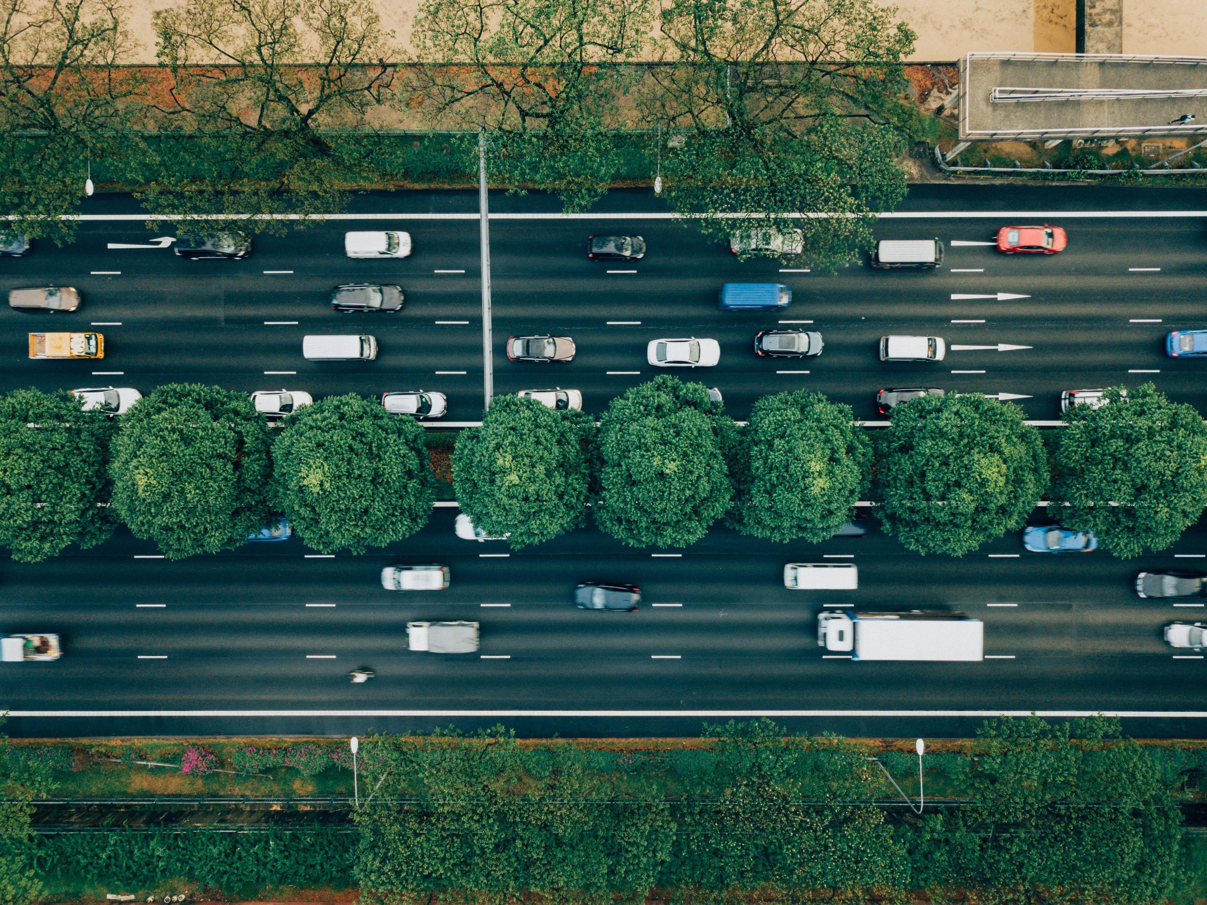 Website Traffic_Markentum