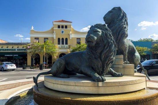 San Marco Lions_Markentum
