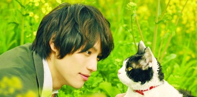 The Traveling Cat Chronicles (旅猫リポート) (2018; dir. Koichiro Miki)